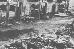 Maidanek Crematorium