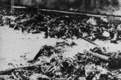 Maidanek